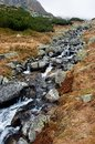 Mountain stream wild brook with stones Stock Images