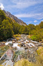 Mountain Stream in the Wilderness Stock Photography