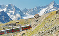 Mountain train in the swiss alps Royalty Free Stock Image