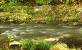 Mountain trout stream Стоковое Изображение RF