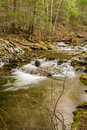 A Mountain Trout Stream in the Blue Ridge Mountains of Virginia, USA Royalty Free Stock Photo