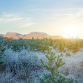 Mountain valley at the early morning Royalty Free Stock Photo