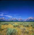 Mountain view deltagande storslagen teton nationalpark Royaltyfria Bilder