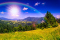 Mountain view from green meadow in summer morning Stock Photography