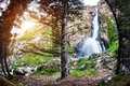 Mountain waterfall in the fir forest at sunrise in dzungarian alatau kazakhstan central asia Stock Image