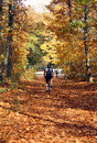 Mountainbike a men riding a bike in the autumn forest Stock Photography