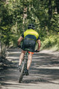 Mountainbiker rides in forest race Royalty Free Stock Photography