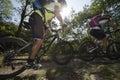 Mountainbiking mountain bike downhill mountainbike in green forest Stock Image