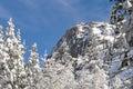 Mountaineering cliff climbing destination lover s leap near lake tahoe california Stock Photography