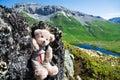 Mountaineering teddy bear in mountains Stock Photos