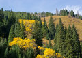 Mountains autumn panorama Stock Photography