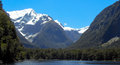 Mountains and fiords in new zealand snow fiordland blue sky Stock Image