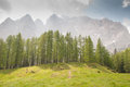 Mountains with forest dreamscape trees and grass Royalty Free Stock Photos