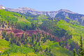 Mountains and hillsides near telluride colorado usa nature in summer at high altitude Stock Images