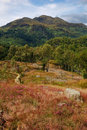 Mountains between Loch Achray and Loch Katrine Royalty Free Stock Photo