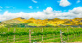 Mountains of New Zealand Royalty Free Stock Photo