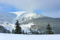 Mountains in the snow christmas trees high carpathian Stock Photo