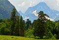 Mountains this is sunny day in valley caucasus Royalty Free Stock Photos