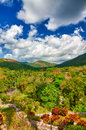 Mountains and tropical valleys in Cuba Royalty Free Stock Image