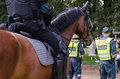 Mounted police horse and policeman public event close up of at Royalty Free Stock Photos
