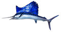 Mounted Sailfish Royalty Free Stock Photo