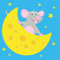 Mouse with cheese funny on a star background Stock Photo