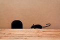 Mouse house in the wall silhouette mouse little comes a hole Stock Photos
