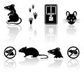 Mouse icons set of black on white background illustration Stock Photos