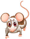A mouse illustration of on white background Stock Photos
