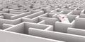 Mouse Maze Royalty Free Stock Photo