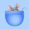 Mouse In Pocket Royalty Free Stock Photography