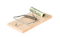 A mouse trap with money Royalty Free Stock Photo