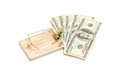 Mouse trap with money as bait isolated shot of Royalty Free Stock Photos
