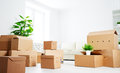 Move lots of cardboard boxes in empty new apartment an Stock Photography