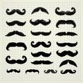 Movember mustache set