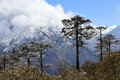 Movement of the clouds on the mountains kongde ri himalayas ne nepal Stock Image