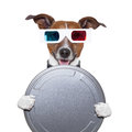 Movie film canister 3d glasses dog Royalty Free Stock Photo