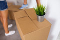 Moving box with a plant on it time to unpack close up Stock Photos