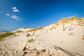 Moving dunes in Leba, Poland Stock Photography