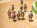 Moving jocky and horse racing sport jocking at korat thailand january Stock Images