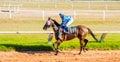 Moving shot jocky and horse racing sport jocking at korat thailand january Stock Images