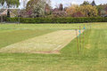 Mowed cricket pitch a in good condition ready to have a match Stock Images
