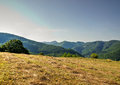 Mowed grass on mountain meadow with valley in distance Stock Photography