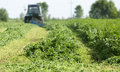 Mowing clover field with rotary cutter preparing shamrock for cattle food Royalty Free Stock Photo