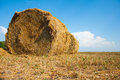Mown field with bales straw Royalty Free Stock Photo