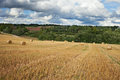 Mown field wheat under cloudy sky Stock Images