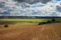 Mown field wheat under cloudy sky Royalty Free Stock Image