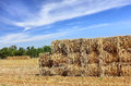 Mown hay harvested in large briquettes on the field food for cattle for winter Royalty Free Stock Photos