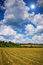 Mown hay with lines spring or summer background Royalty Free Stock Image