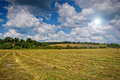 Mown hay with lines spring or summer background Royalty Free Stock Photography